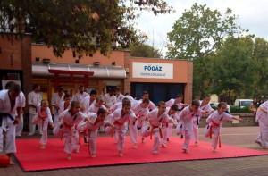 Nagykテ。ta karate demonstration (4)